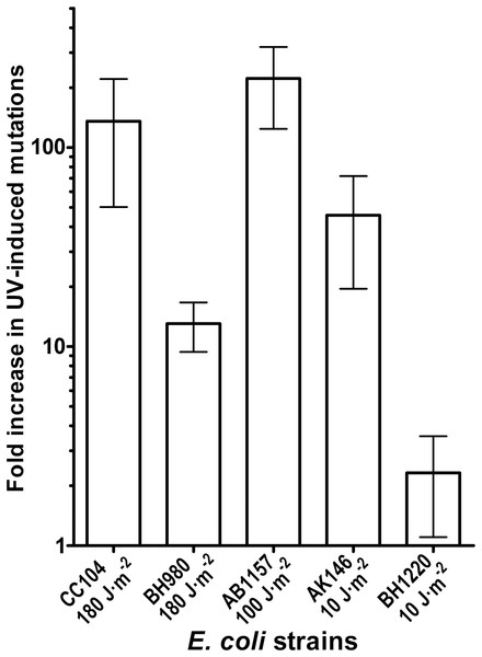 Graphic representation of the UV-induced increase in mutation frequencies in E. coli cells.