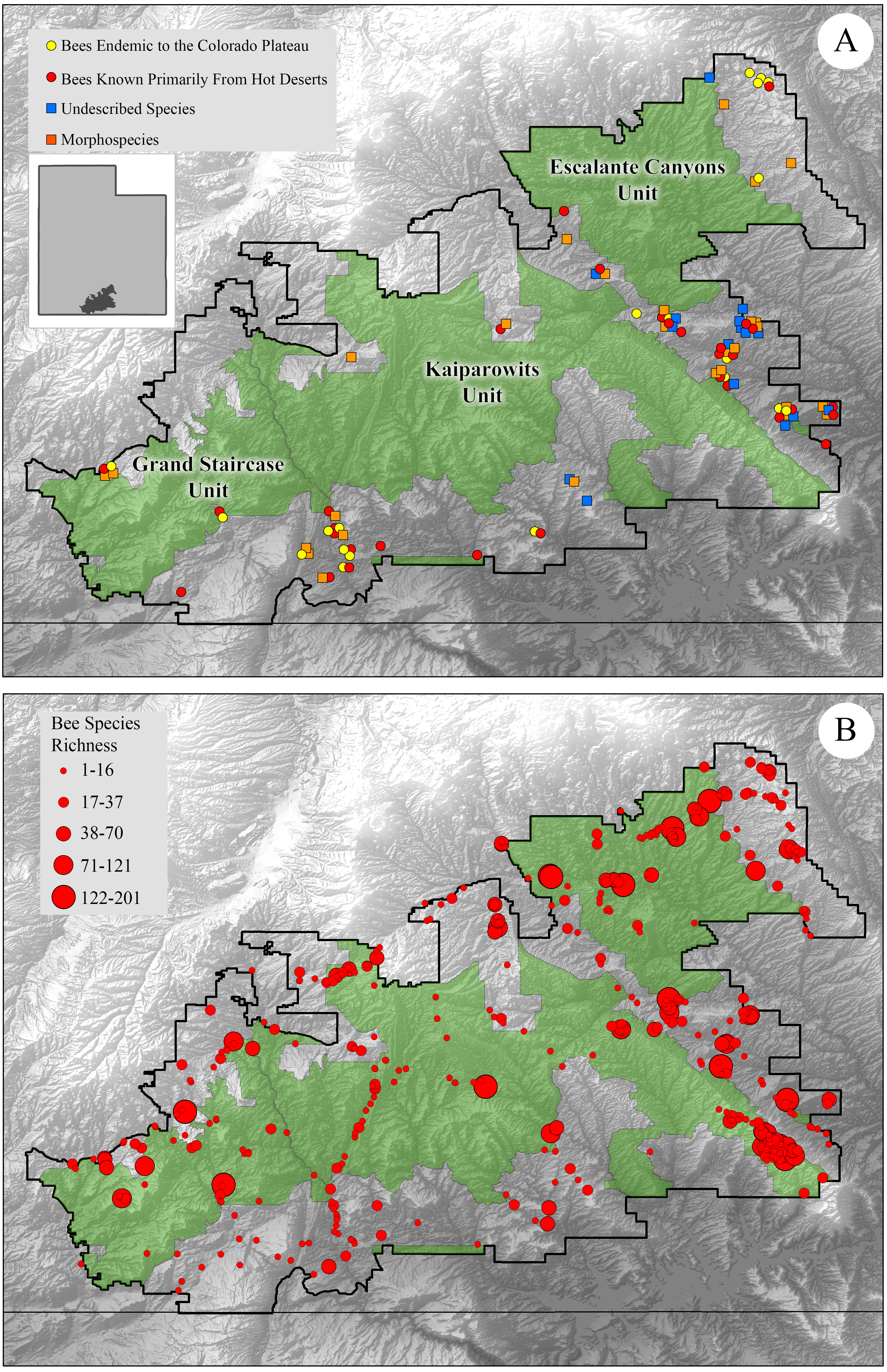 Reducing Protected Lands In A Hotspot Of Bee Biodiversity Bees Of