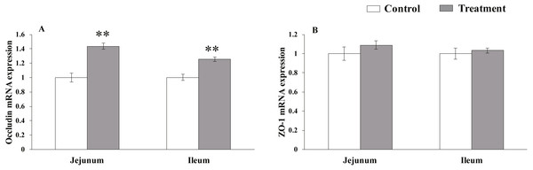 The relative mRNA expression of TJs in the intestinal tissues of weaned piglets.