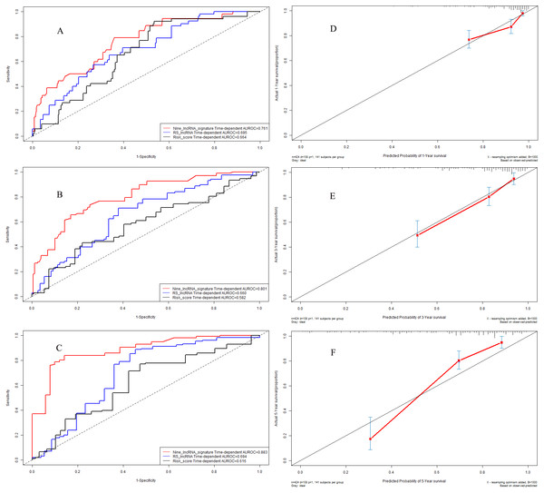 Performance of nine-lncRNA prognostic signature in validation cohort: Time-dependent receiver operating characteristic curves of three prognostic models according to 1-year (A), 3-year (B) and 5-year (C) overall survival. (D) Calibration curve for 1-year overall survival; (E) Calibration curve for 3-year overall survival; (F) Calibration curve for 5-year overall survival.