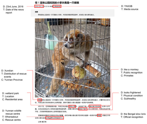 A typical example of data collection from a Chinese online news report of a rescue event.