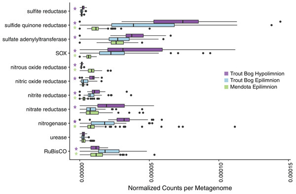 Analysis of marker gene abundances reveals differences between lakes and layers.