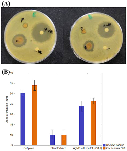 Comparative effect of AgNPs against E. coli and B. subtilis.