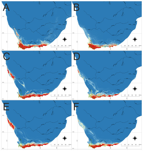 The potential area of the suitable niche for Disa bracteata in Southern Africa.