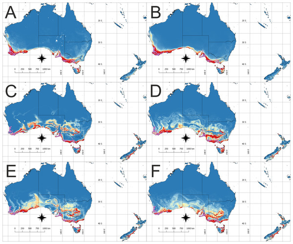 The potential area of the suitable niche for Disa bracteata in Australia and adjacent islands.