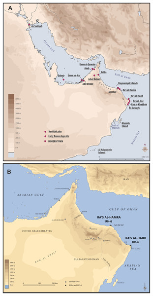 Two coastal headlands are central to the present study: Ra's al-Hamra, on the eastern limit of the sandy coast of Batinah, and Ra's al-Hadd, at the easternmost extreme of the Ja'alan region.