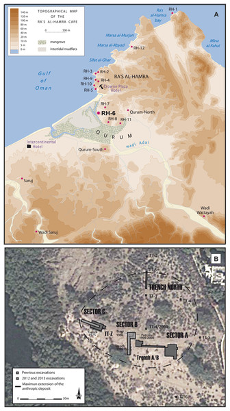 The archeological sites and sandy beaches at Ra's al-Hamra.