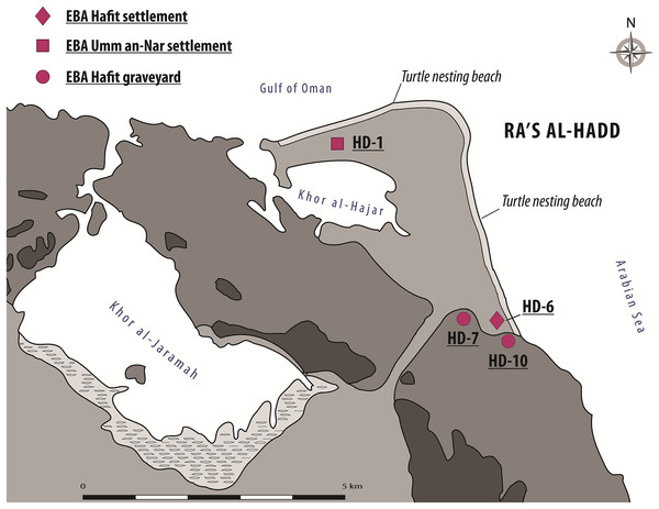 The Ra's al-Hadd area, showing locations of archeological sites mentioned in the text, as well as present-day turtle nesting beaches.