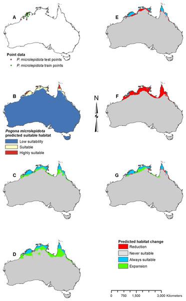Result maps for Pogona microlepidota.