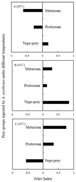 Ivlev Index of A. erythraea in different temperature treatments.