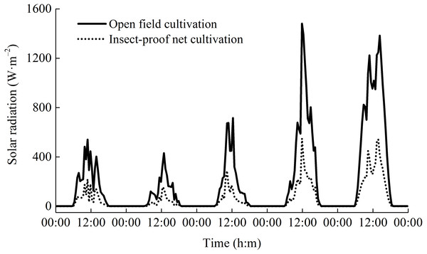 The dynamics of daily solar radiation under open field cultivation and insect-proof nets cultivation (Data were obtained from Sep 9 to Sep 14, 2011).
