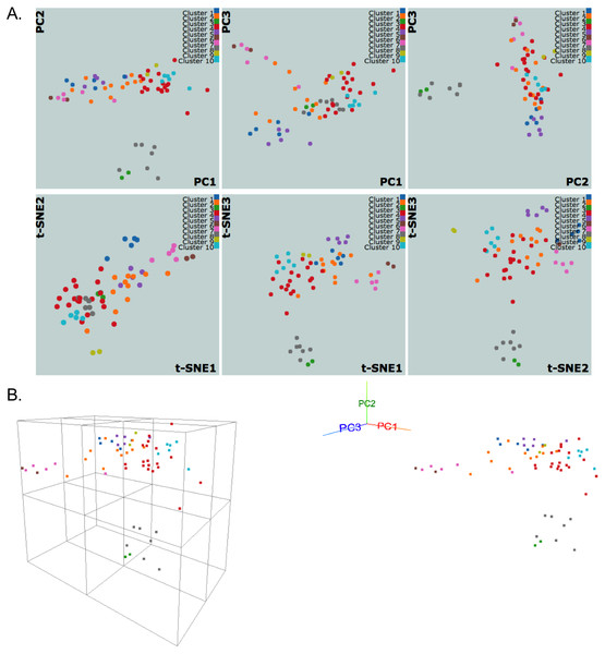 NCI60 gene expression sample data clustering of samples using k-medoids algorithm.