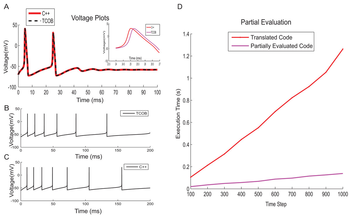 Temporal Constrained Objects For Modelling Neuronal Dynamics Peerj 1000 Ideas About Series And Parallel Circuits On Pinterest Science Correctness Of Computations Performance Improvement