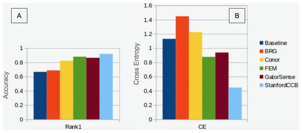 Classification performance comparison.