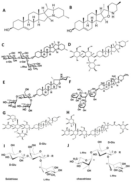 Structure of the major glycoalkaloids of S. nigrum: aglycones solanidine (A) and solasodine (B) and their glycosylated derivatives α-solanine (C), solasonine (D) and solamargine (E); their constituent carbohydrate moieties (I–J) and steroidal saponins degalactototigonin (F), nigrumnin-I (G) and uttroside B (H).