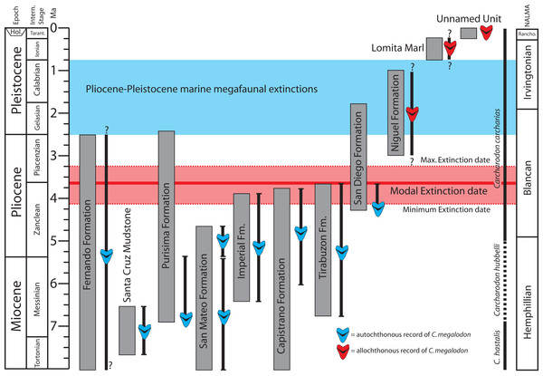 Geochronologic age range of Otodus megalodon-bearing strata and occurrences in the eastern North Pacific.