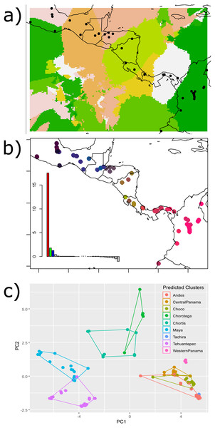 Results of the (A) Bayesian (Geneland) and (B–C) multivariate spatial analyses (sPCA) for H. fleischmanni population clustering based on mtDNA sequences.