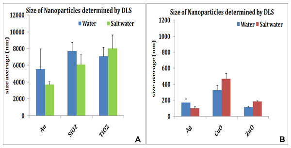 Size of nanoparticles by DLS.