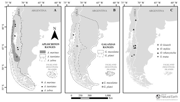 Map of sampled species and locations across Patagonia.