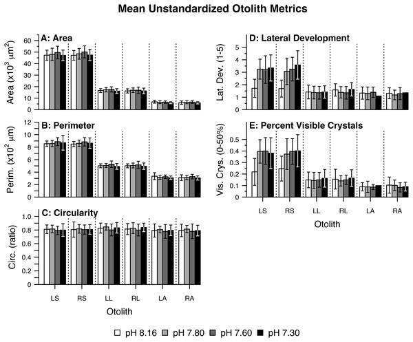 Mean unstandardized otolith metrics.