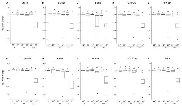 Relative gene expression of F1 larvae.