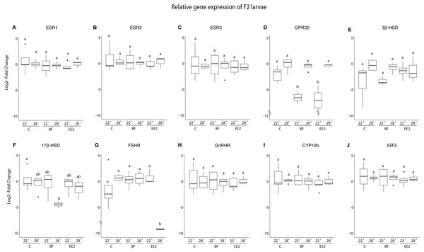 Relative gene expression of F2 larvae.
