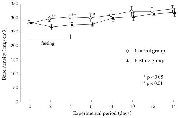 Lumbar vertebral bone mineral density of rats in the experimental period.