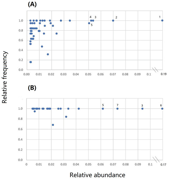 The relative frequency vs relative abundance of core bacterial operational taxonomic units (OTUs) in the root and leaf endospheres of S. vulgaris plants.