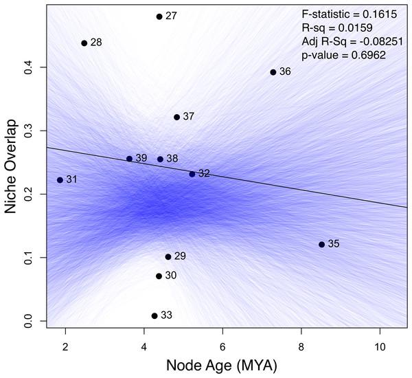 Linear regression of the age-range correlation (ARC).