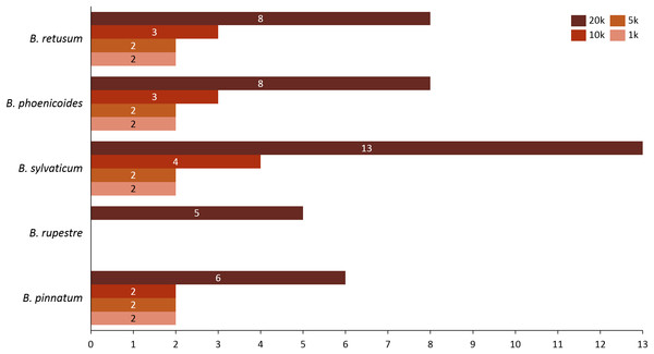 Number of appearances of each species in the rules generated in dataset 7 using all distances.