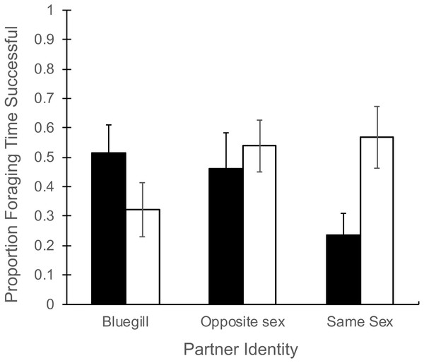 Proportion of foraging time resulting in food consumption for male and female mosquitofish.