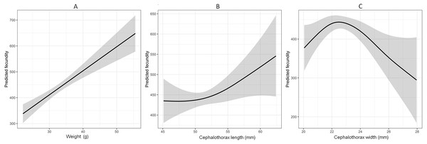 Generalized additive model (GAM) explaining the relationship between weight, cephalothorax length, cephalothorax width and fecundity of Procambarus clarkii.
