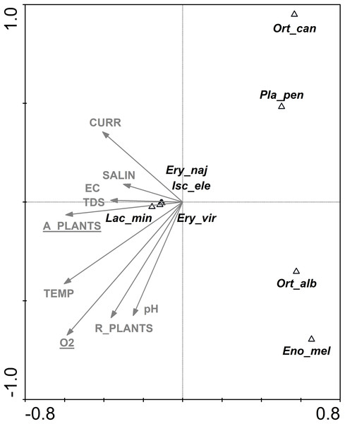 CCA ordination biplot showing the distribution of Odonata, Coleoptera and Trichoptera taxa of the outlet canals vs. environmental (physical, chemical and structural) variables.
