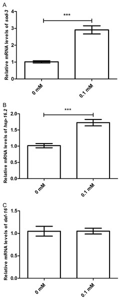 Didymin increased the mRNA expression levels of sod-3 and hsp-16.2, but not that of daf-16 in nematodes exposed to UV irradiation.