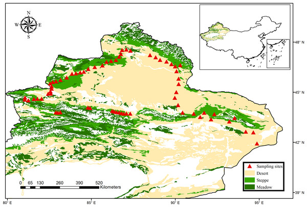 Map of sampling sites across the typical dryland of northwest China.