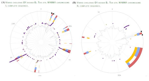 V. Cholerae O1 El Tor Genomic Analysis for virulence and antibiotic resistance genes.