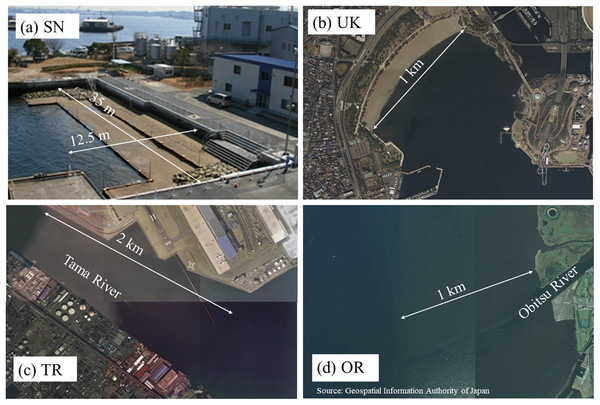 Photos of the four tidal flats: (A) SN, (B) UK, (C) TR, and (D) OR.