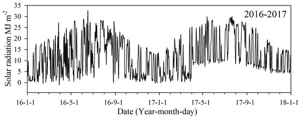 Daily solar radiation in 2016 and 2017 during the monitored growing seasons in Changsha, China.