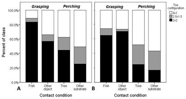 Raw proportional distributions of each toe configuration scored from 995 web images of Ospreys for single- and dual-foot grasps.