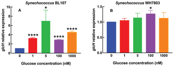 Effect of different glucose concentrations on glcH expression in marine Synechococcus strains.