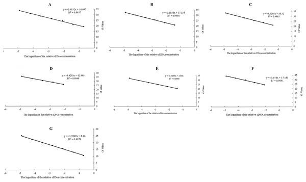 Standard curves of seven candidate reference genes of Radopholus similis.