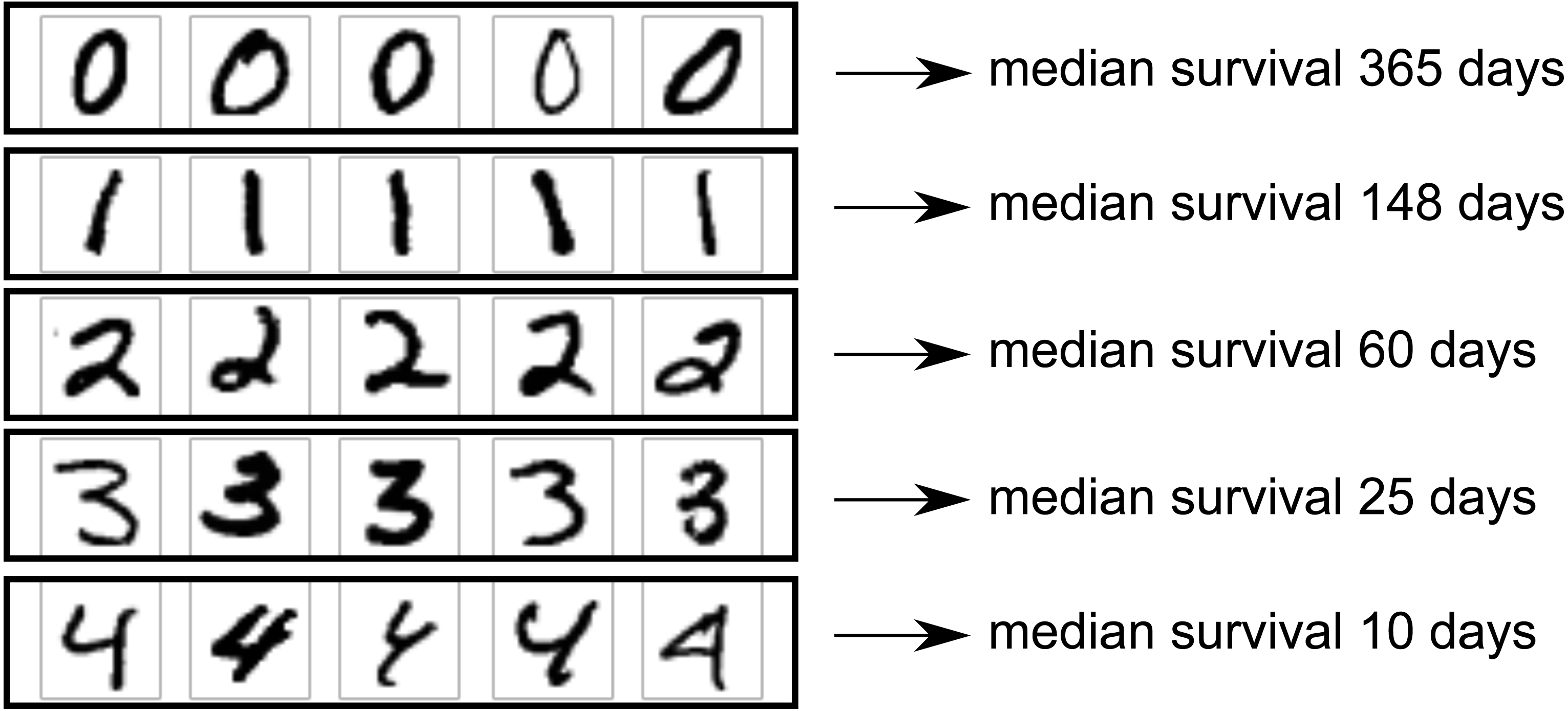 A scalable discrete-time survival model for neural networks [PeerJ]