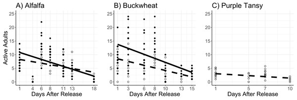 Mean number of active Megachile rotundata adults per observation period.