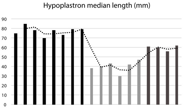 Median length of the hypoplastron (HypoML) in a sample of 18 specimens of Banhxeochelys train.