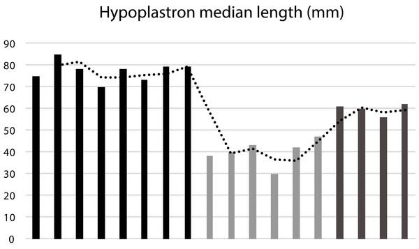 Median length of the hypoplastron (HypoML) in a sample of 18 specimens of Banhxeochelys train.