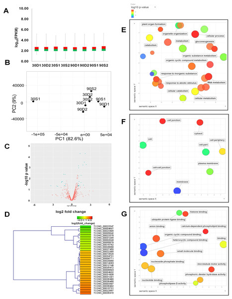 Expression profiles of identified lncRNAs and their functional classification.