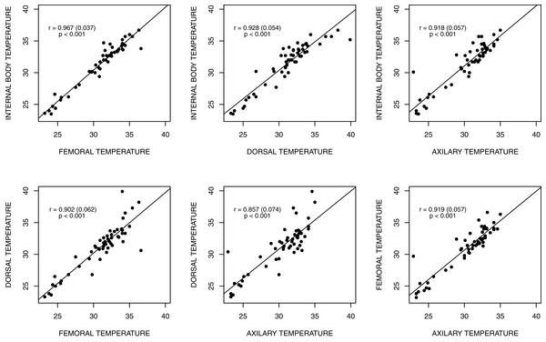 Graphic representation of the land iguana body temperatures.