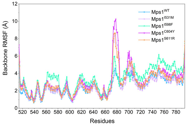 RMSFs of backbone atoms versus residue number in the five studied systems from conventional MD simulations.