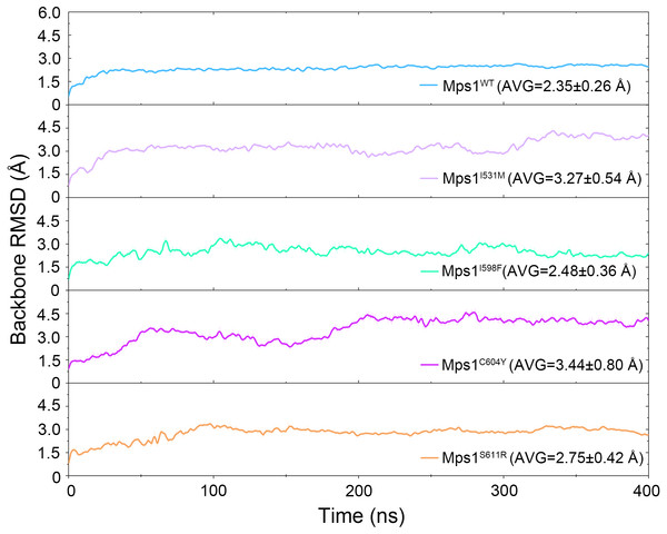 Time evolution of the RMSD values of backbone atoms of the Mps1 protein in the five studied systems from GaMD simulations.
