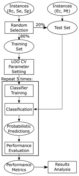 Flowchart depicting training and testing methodology.
